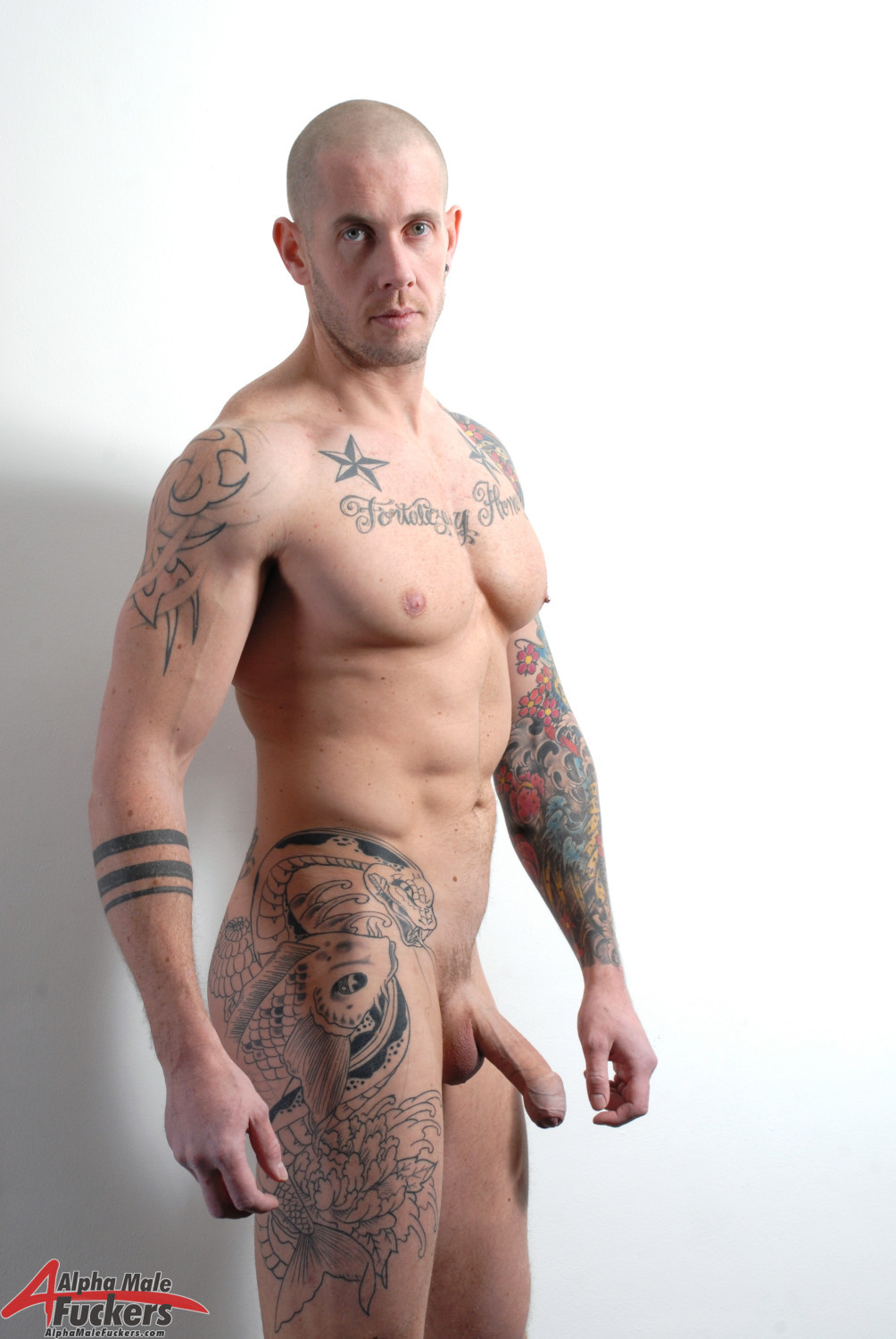 Muscled and tattooed guy sucks it hard gay porn
