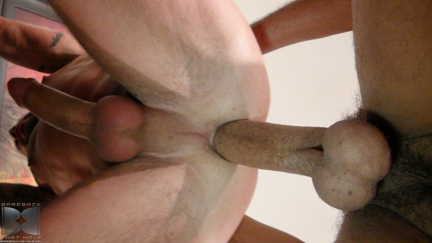 Gay big cock bareback
