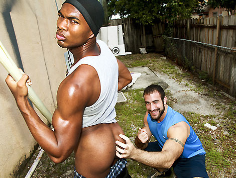 Thug-Hunter 12 Amateur Porn Site Memberships for the Price of 1 -- $1 Trial @ BigDaddy - Featuring the Biggest Black Cocks Anywhere