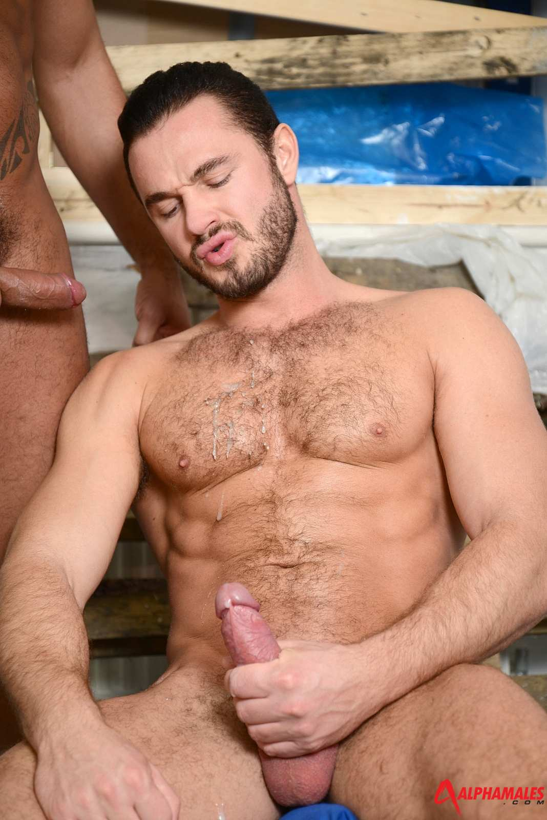 Hairy man fuck boy