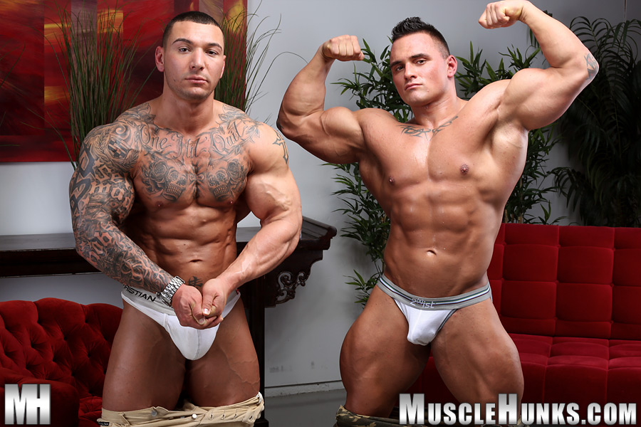 muscle hunks body builders gay jocks