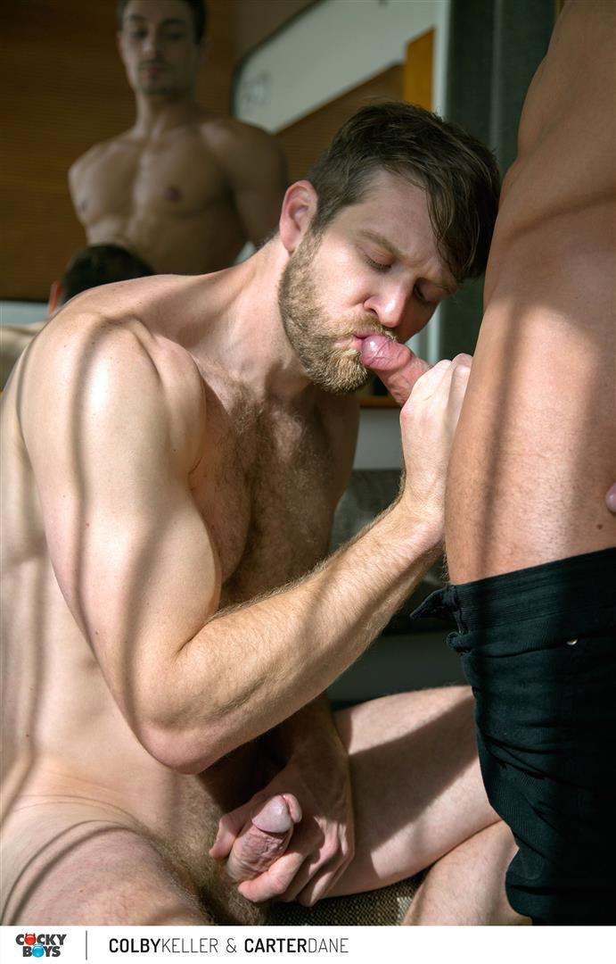 Cockyboys Colby Keller and Carter Dane Big Dick Fucking Amateur Gay Porn 42 Colby Keller Fucking New Cockyboy Carter Dane